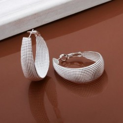 Wholesale High Quality Jewelry 925 jewelry silver plated Flat U web Earrings for Women best gift SMTE064,Home,Wholesale High Quality Jewelry 925 jewelry silver plated Flat U web Earrings for Women best gift SMTE064,32602231420,,$2.60,$2.60,$0.98,$1.62,Shopping dog